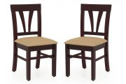 Buy Apple Dining Chair - Set of 2 Online at Low Price - Dining Room Chair | JFA